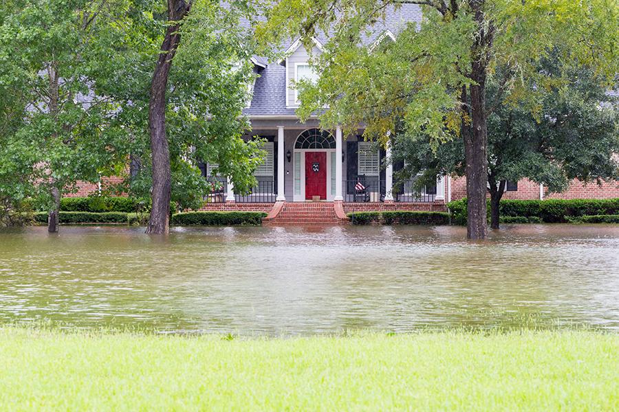 flood insurance graybeal group