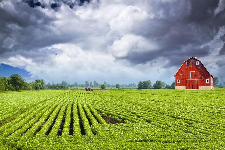 farm insurance coverage options